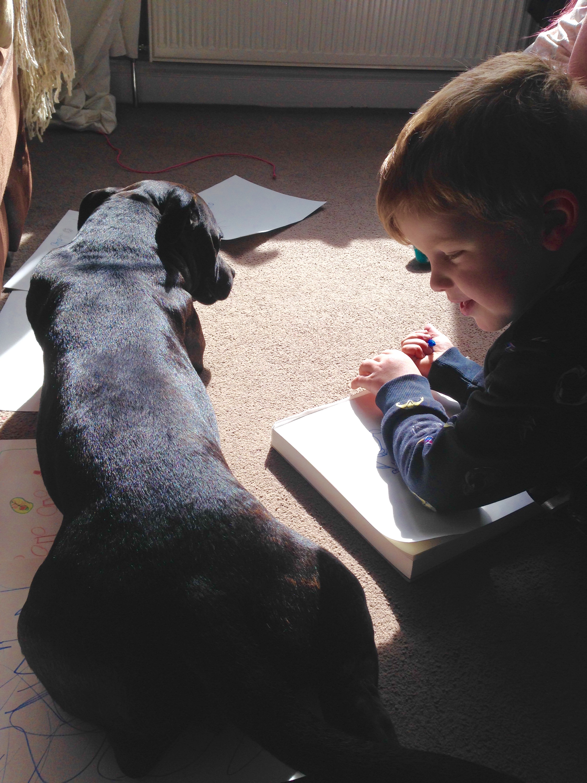 Staffordshire bull terrier acting as the Nanny Dog.